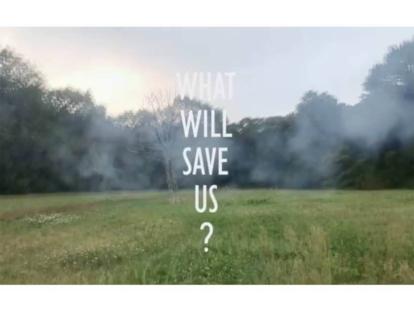 What Will Save Us